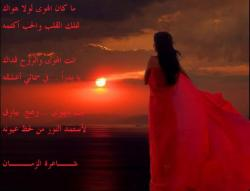 Nour's picture