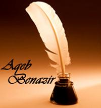 AqebBenazir's picture
